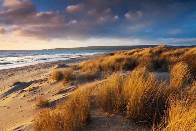 Dorset Location 1
